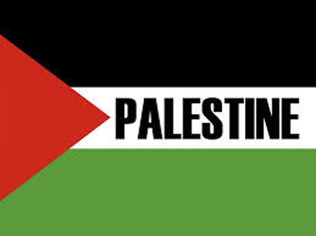 plf palestine flag